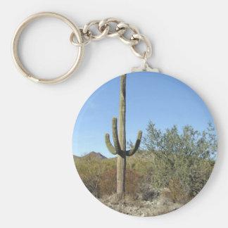 Sonoran Desert scene 07 Key Chain