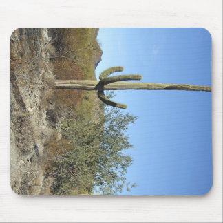 Sonoran Desert scene 07 Mouse Pad