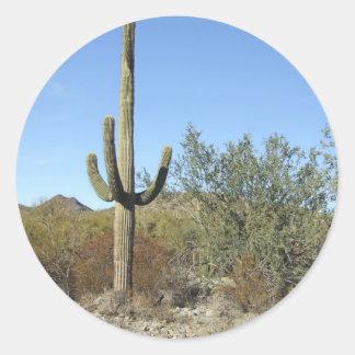 Sonoran Desert scene 07 Sticker