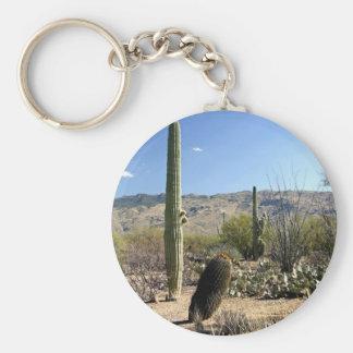 Sonoran Desert scene 08 Key Chain