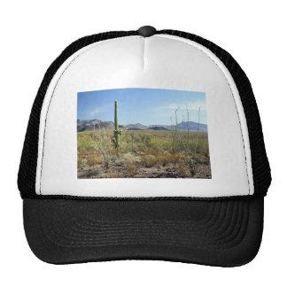 Sonoran Desert scene 09 Trucker Hat