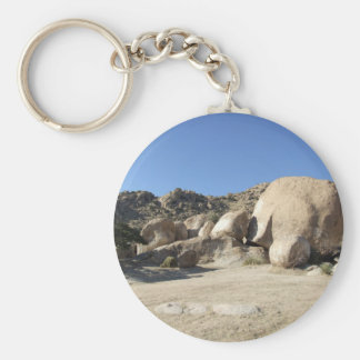 Sonoran Desert scene 10 Key Chain