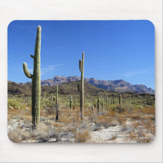 Sonoran Desert Scene 13 Mouse Pad