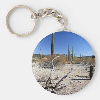 Sonoran Desert Scene 14 Keychain