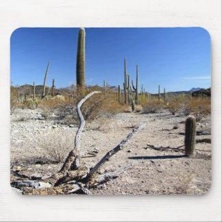 Sonoran Desert Scene 14 Mouse Pad