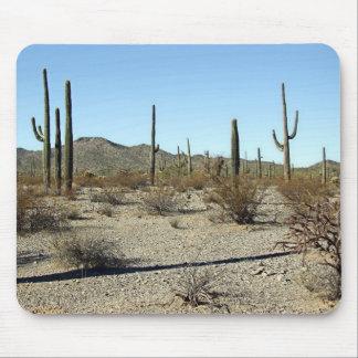 Sonoran Desert Scene 16 Mouse Pad