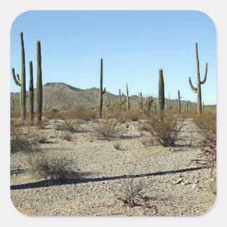 Sonoran Desert Scene 16 Sticker