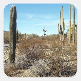 Sonoran Desert scene Stickers