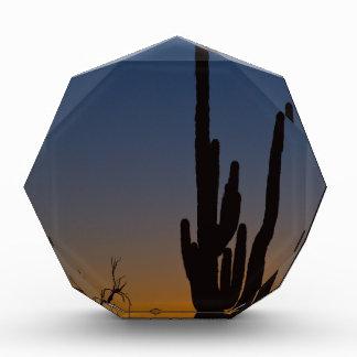 Sonoran Desert Sunrise Award