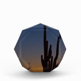 Sonoran Desert Sunrise Awards