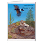 Sonoran Desert Surprises Greeting Card