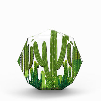 Sonoran Habitat Acrylic Award
