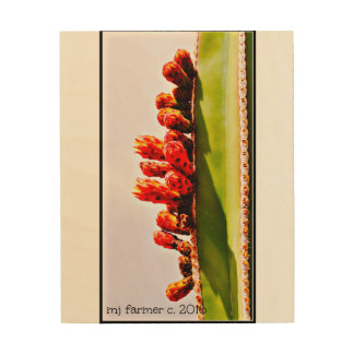 Sonoran Stove Pipe Cactus in Bloom Wood Wall Decor