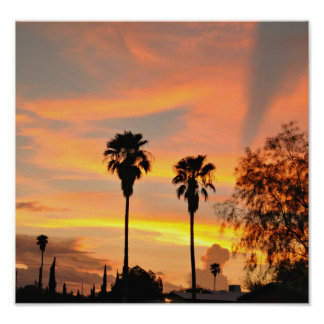 Sonoran Sunset 2 Poster