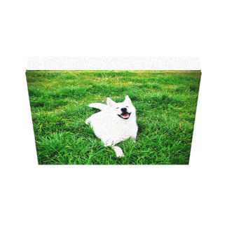 Sonrisa 25,4 x 20,3 cm de Quadro Krystal Lona Envuelta Para Galerías