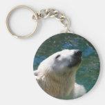 Sonrisa de los osos polares llaveros