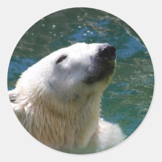 Sonrisa de los osos polares pegatina redonda