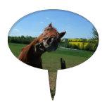 Sonrisa de un frente del caballo de un campo de la decoraciones de tartas