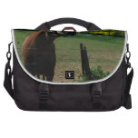 Sonrisa de un frente del caballo de un campo de la bolsa de ordenador