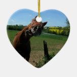 Sonrisa de un frente del caballo de un campo de la ornamento para arbol de navidad