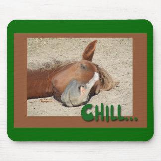 Sonrisa del caballo el dormir: Frialdad Mousepads