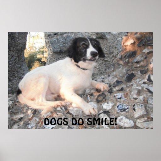 Sonrisa del castillo de Sprollie del poster que vi