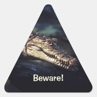 Sonrisa del cocodrilo pegatinas trianguladas personalizadas