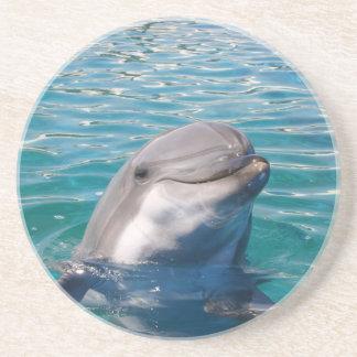 Sonrisa del delfín posavasos de arenisca