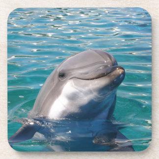 Sonrisa del delfín posavasos de bebidas