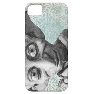 Sonrisa del Dobby iPhone 5 Fundas