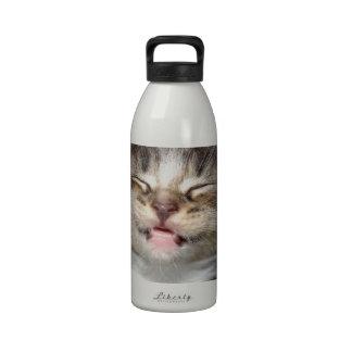 Sonrisa del gatito botallas de agua