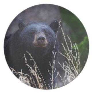 sonrisa del oso negro platos para fiestas
