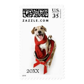 Sonrisa feliz enorme en la cara del perro de timbre postal