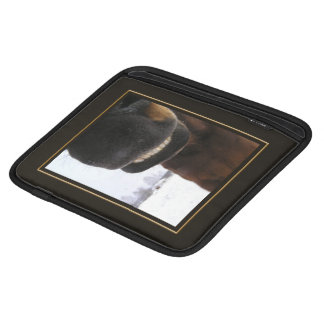 Sonrisa Fundas Para iPads