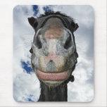 Sonrisas divertidas del caballo alfombrillas de raton