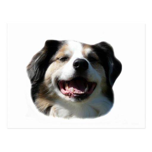 ¡Sonrisas grandes de Aussie! Tarjetas Postales
