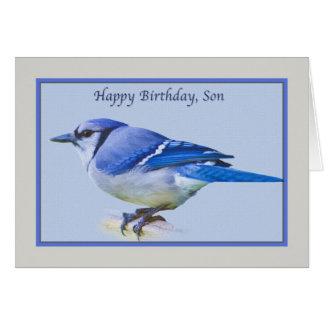 Son's Birthday Card with Blue Jay Bird