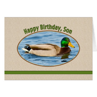 Son's Birthday Card with Mallard Duck