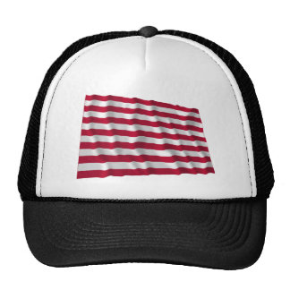 Sons of Liberty Flag Trucker Hat