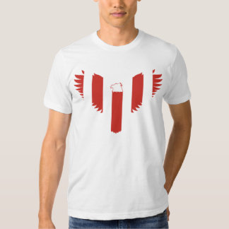 Sons of Liberty (striped) T Shirt