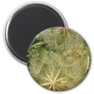 Sony Ericson phone pics Sept 09-Jan 11 783 2 Inch Round Magnet