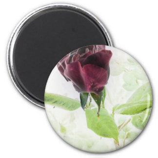 Sony Ericson phone pics Sept 09-Jan 11 852 2 Inch Round Magnet