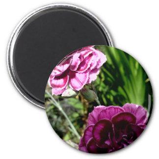 Sony Ericson phone pics Sept 09-Jan 11 857 2 Inch Round Magnet