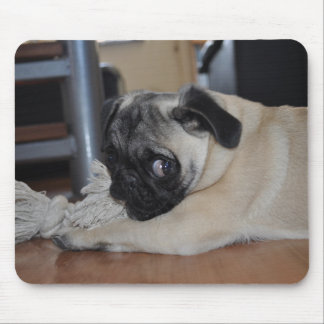 """""""Sooled Design"""" """"Our little puppy 1"""" Mouse Pad"""