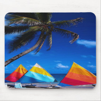 Soon to Sail Mouse Mat