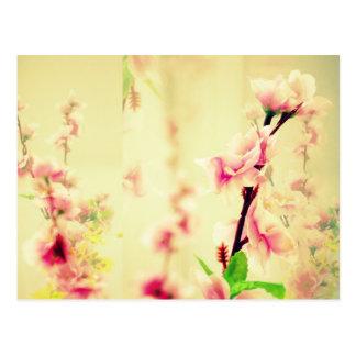 Soothing Flowers ! Postcard