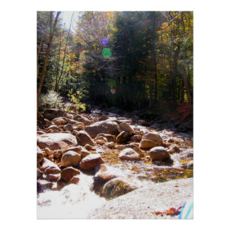 Soothing River trees Poster