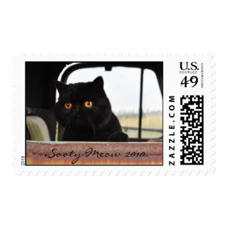 Sooty Meow in truck Postage Stamp