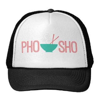 Sopa de fideos del vietnamita de Pho Sho Gorro De Camionero
