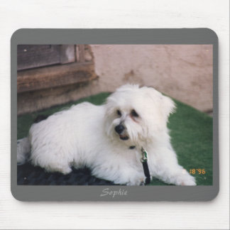 Sophie - Maltese photo mousepad